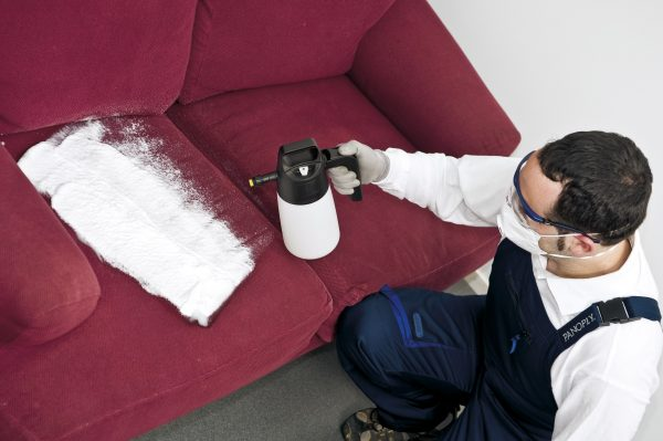 foam sprayer for furniture